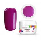 Inginails gel colorat UV/LED - Violet Smoke, 5g